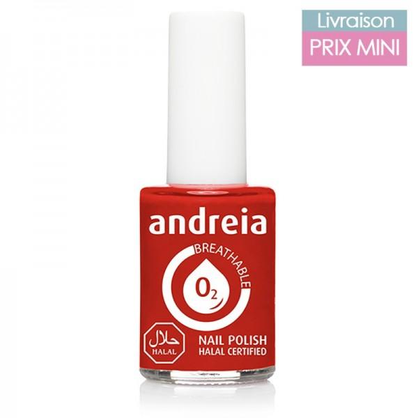 Vernis à ongles Andreia B06 Rouge Vif