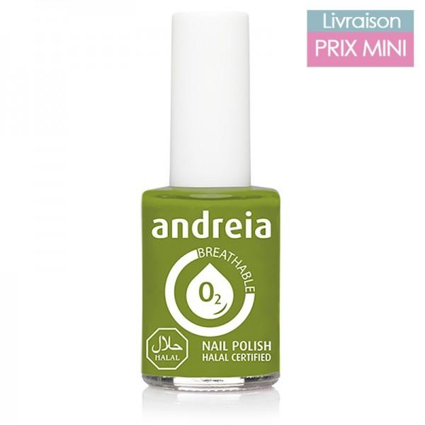 Vernis à ongles Andreia B10 Vert Pomme