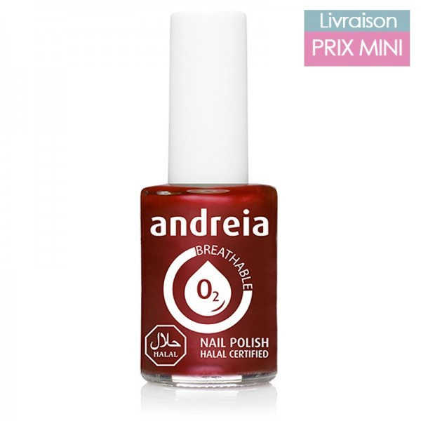 Vernis à ongles Andreia B12 Brique