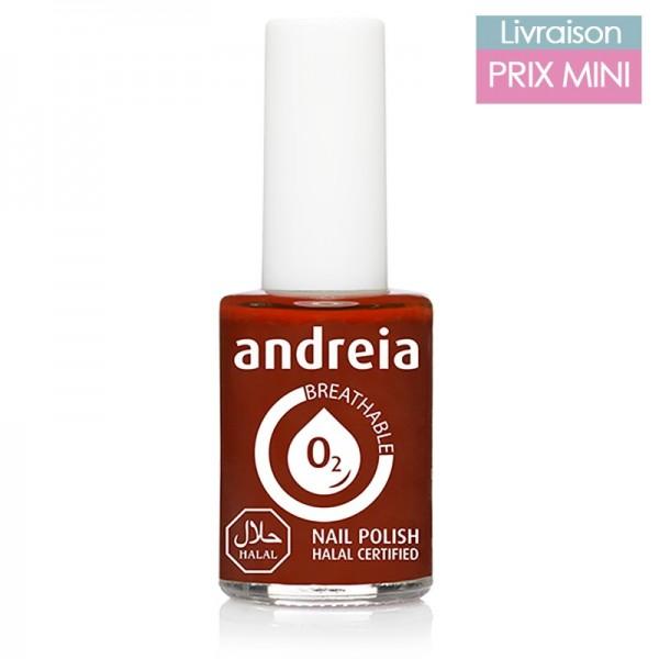 Vernis à ongles Andreia B15 Orange