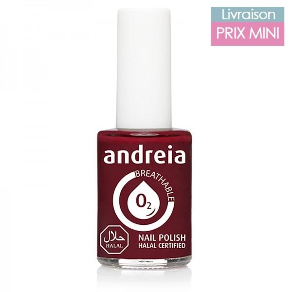 Vernis à ongles Andreia B17 Lie de Vin